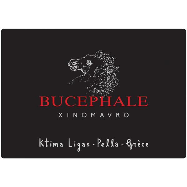 Ligas Bucephale 2018