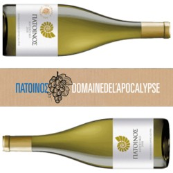 Τα εκπληκτικά κρασιά Πάτοινος από το νησί της Αποκάλυψης, διαθέσιμα από την Greece and Grapes!