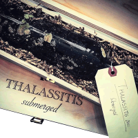 Thalassitis Submerged 2014