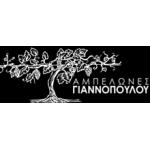 Γιαννόπουλος - Αμπελώνες