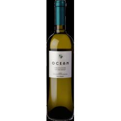 Idaia Ocean White 2018