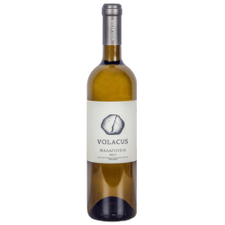 Volacus Μαλαγουζιά 2018